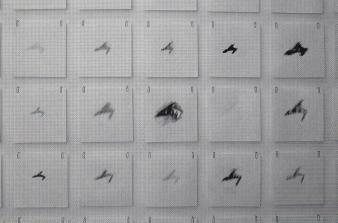 """Michael Gerard Maranda HISTORY [AUFHEBUNG] © Michael Gerard Maranda, exposition """"History[aufhbung]"""", Galerie B-312, 1998."""