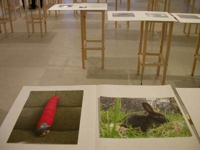 """Marie-Suzanne Désilets Charbon et Turbo © Marie-Suzanne Désilets, Exposition """" Charbon et Turbo"""", Galerie B-312, 2007."""