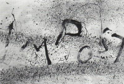 """Éric Ilhareguy DOUTES ET REDOUTES © Éric Ilhareguy, exposition """"Doutes et redoutes"""", Galerie B-312, 2000."""