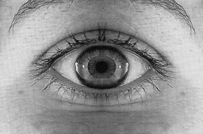 """Manon Lévesque ESPACEMENTS ET AUTRES ANTRES © Manon Lévesque, exposition """"Espacements et autres antres"""", Galerie B-312, 1997."""