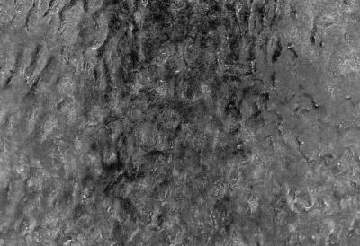 """Marthe Carrier PAYSAGES ET AUTRES VUES © Marthe Carrier, exposition """"Paysages et autres vues"""", Galerie B-312, 1996."""